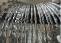 Clipped Razor Wire - 450MM