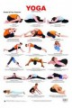 Chart for Yoga-3